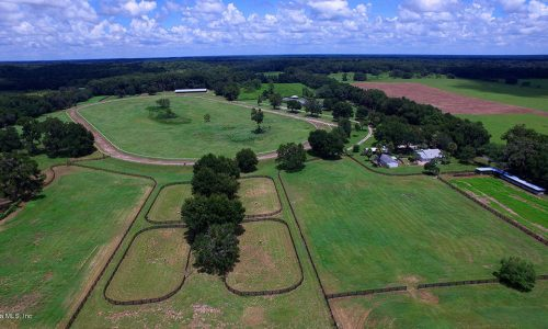 Ocala Ranches Most Trusted Broker In Ocala Horse Farms